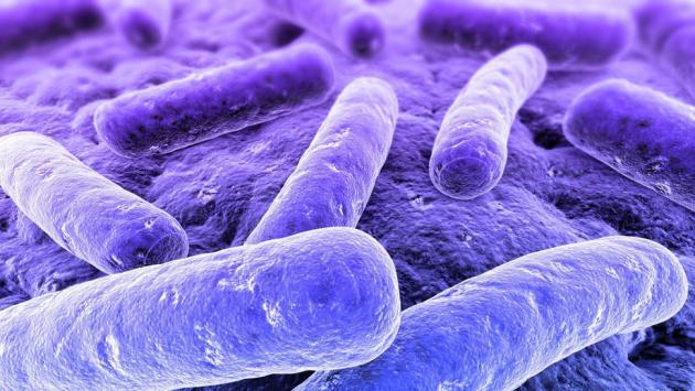 http://fooyoh.com/files/attach/images/1097/129/571/008/antibiotics2.jpg