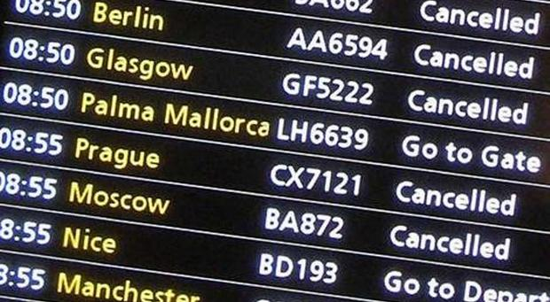 how to find flight number