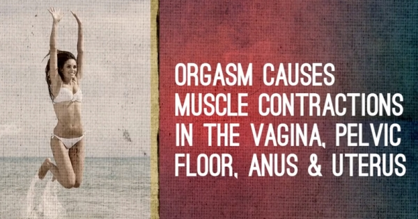 Here Are 10 Facts About The Female Orgasm [VIDEO] :: FOOYOH ...
