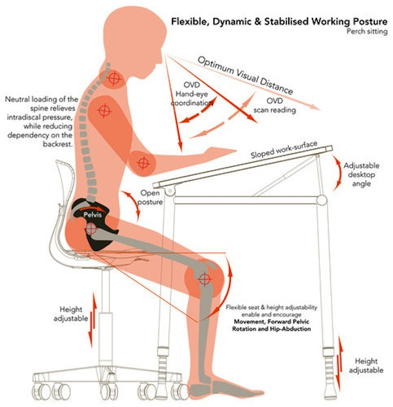 could this ergonomic chair save our kids from death by sitting